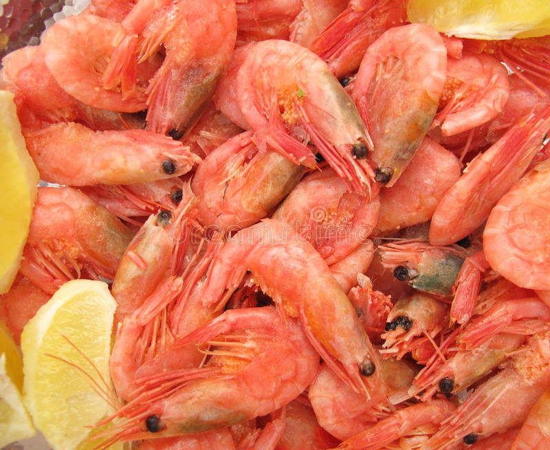 Shrimps With Lemon Stock Image