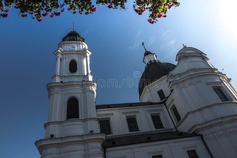 Shrine, de Basilica van de Maagd Maria in Chelm in Oost-Polen royalty-vrije stock foto