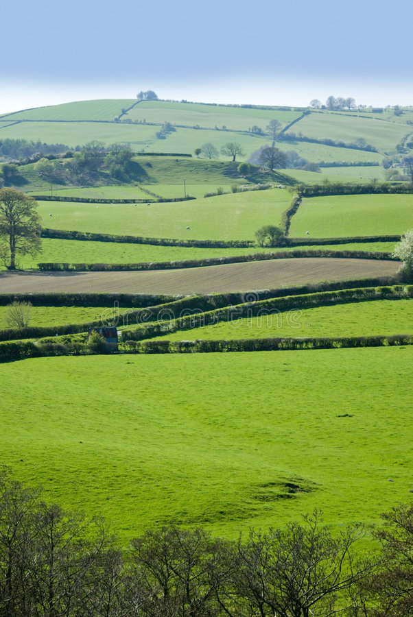 Download Shropshire stock photo. Image of scenic, agriculture, field - 3377640