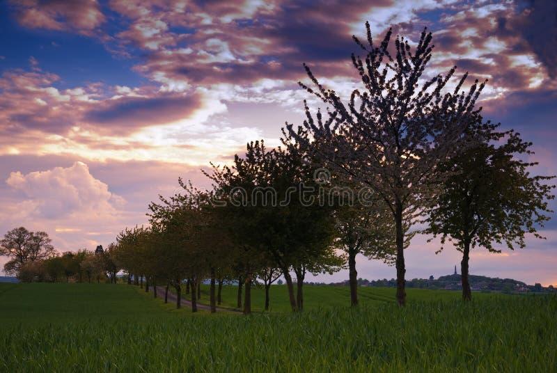 Shropshire Evening