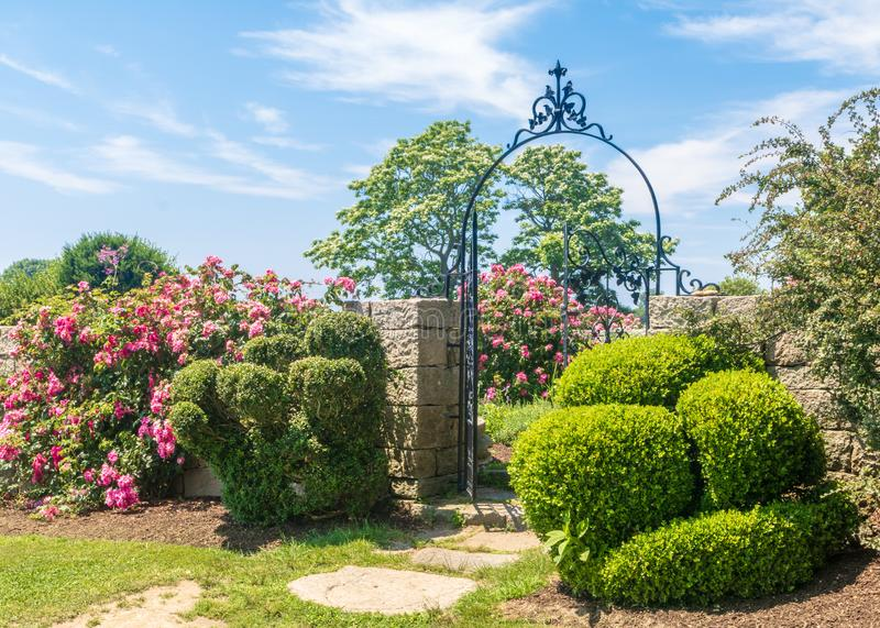 Shrubs and roses near an ornate iron gate stock photo