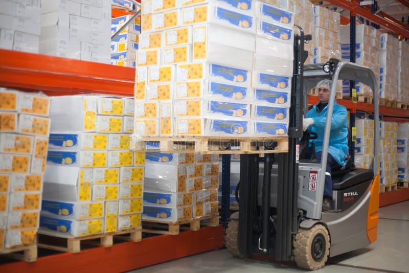 SHUCHIN,白俄罗斯- 2015年1月26日 一个铲车装载者的工作者司机在仓库的有在板台的纸板箱的 免版税库存照片
