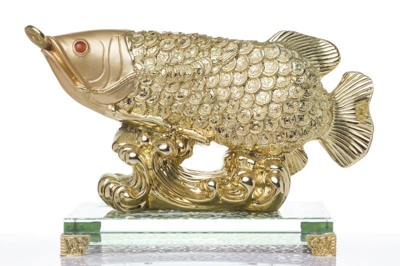 Shui de Feng dos peixes do ouro imagens de stock