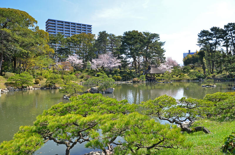 Shukkeien Garden in Central Hiroshima. Pond view of Shukkeien Garden in Central Hiroshima royalty free stock photos