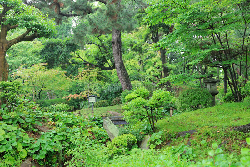 Shukkeien, tuin in Hiroshima, Japan royalty-vrije stock afbeelding