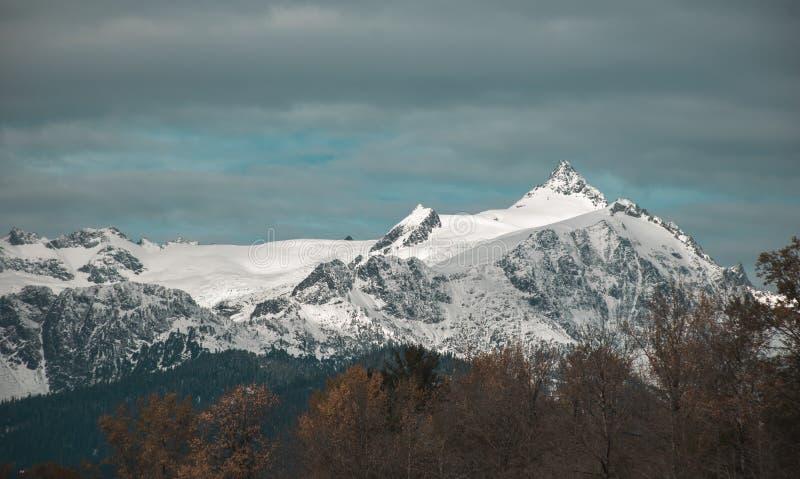 shuksan的Mt是一个美好的峰顶在北部小瀑布国家公园 免版税库存照片