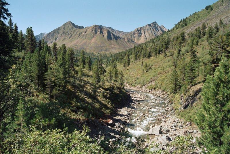 Download Shumak river valley stock photo. Image of sayany, landscape - 7887410