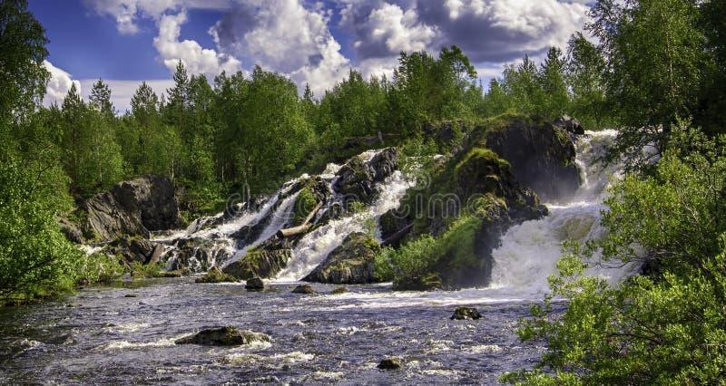 Shuonijoki nedg?ngar Landskap f?r natur f?r vattenfall f?r r?relsesuddighet i Nikel, Murmansk region, Ryssland Frodiga gr?na tr?d arkivfoto