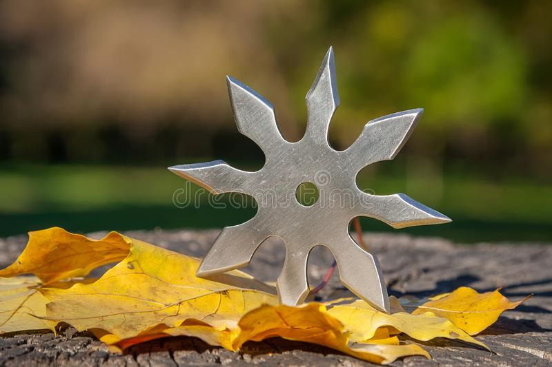 Shuriken throwing star, traditional japanese ninja cold weapon stuck in wooden background.  stock image