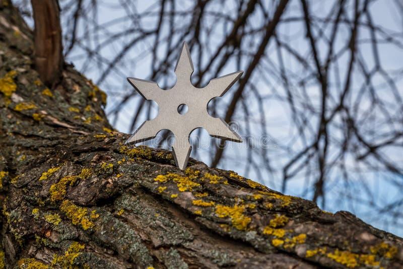Making A Paper Ninja Star | How To Make A Paper Ninja Star ... | 533x800