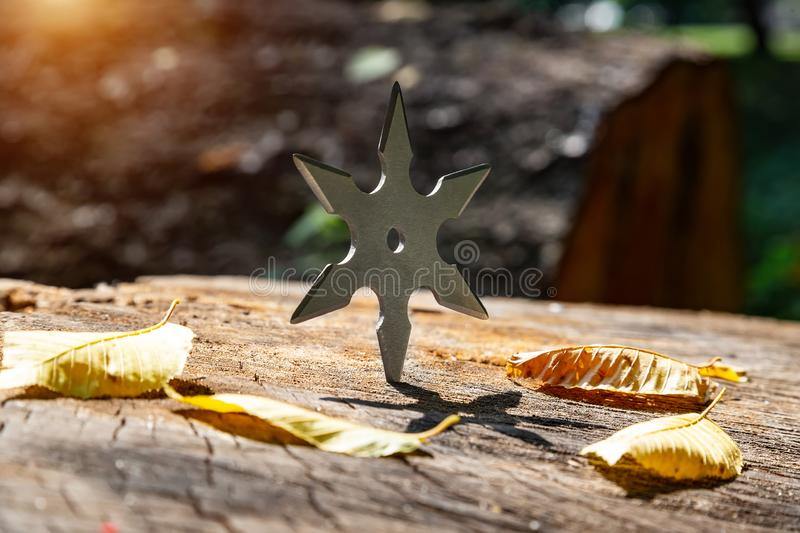 Shuriken throwing star, traditional japanese ninja cold weapon stuck in wooden background royalty free stock photo