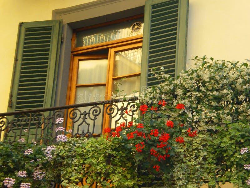 shutters окно Тосканы стоковое изображение