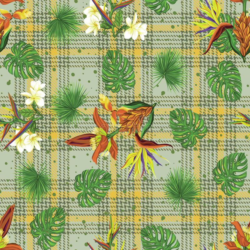 Seamless pattern, background with tropical plants, monstera,strelitzia, bougainvillea, hibiscus,palm plaid background stock illustration
