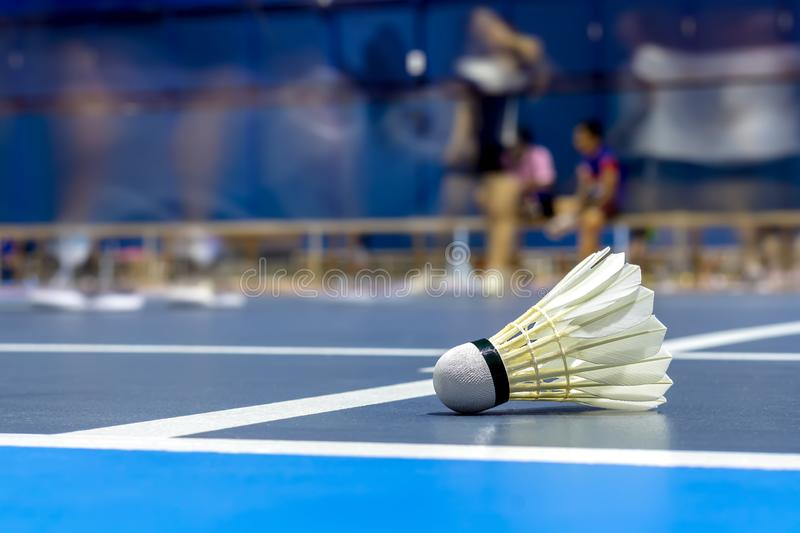 Shuttle badminton in the blue court stock photos