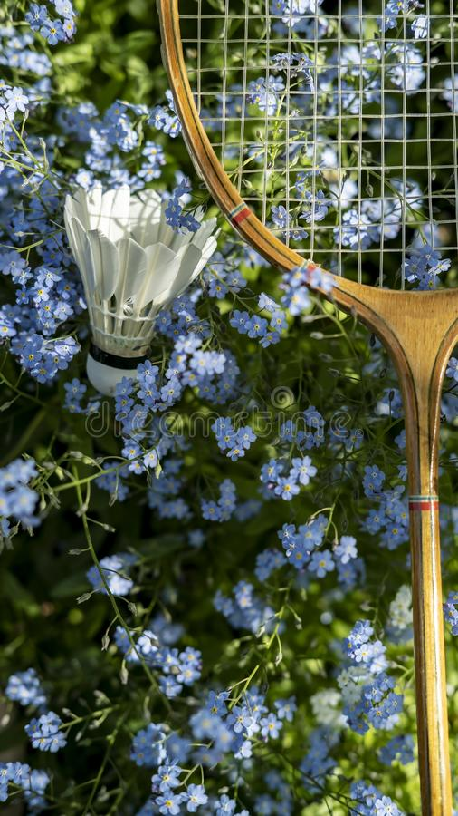 shuttlecock和羽毛球拍在美丽,小蓝色花在庭院里在一个晴朗的夏日 库存照片