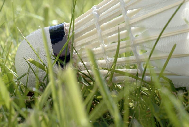 shuttlecock dell'erba fotografia stock libera da diritti