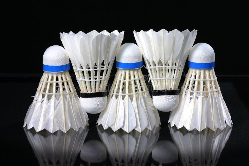 Shuttlecock e badminton fotografia de stock royalty free