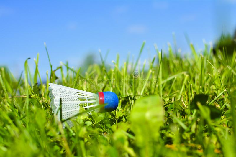 Shuttlecock on the grass. In park in sunny day.  stock photos
