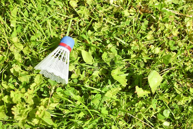Shuttlecock on the grass. In park in sunny day.  stock image