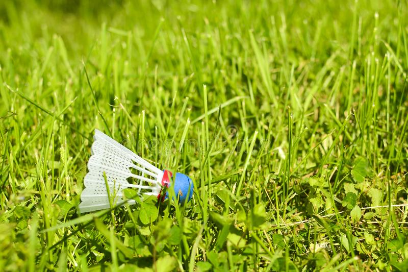 Shuttlecock on the grass. In park in sunny day.  royalty free stock images