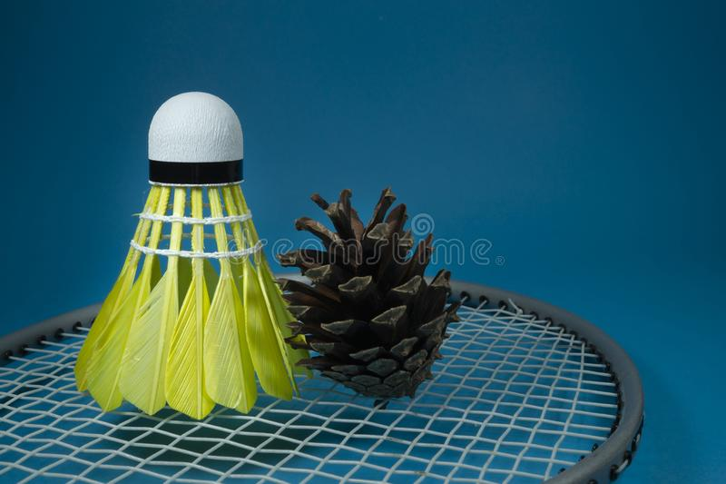 Shuttlecock and pine cone on badminton racket. Yellow feathered shuttlecock and pine cone on badminton racket on blue background in a close up view royalty free stock images