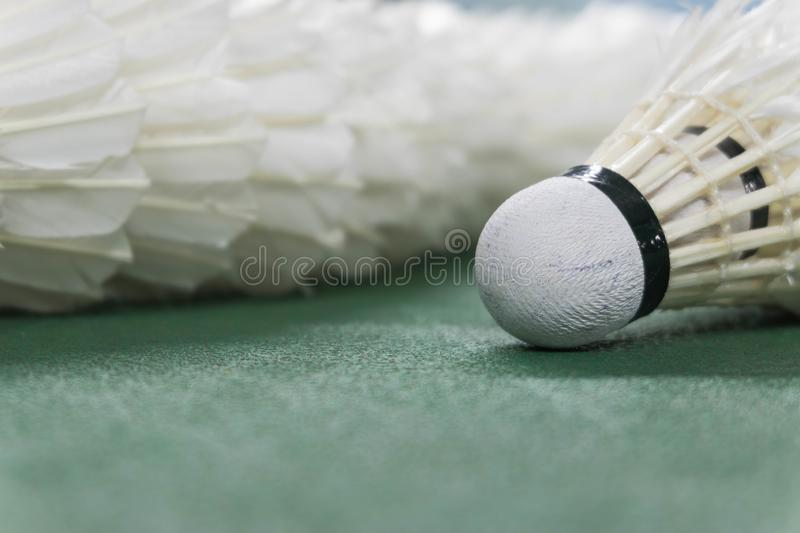 Shuttlecocks closeup with copy space on badminton court royalty free stock photos