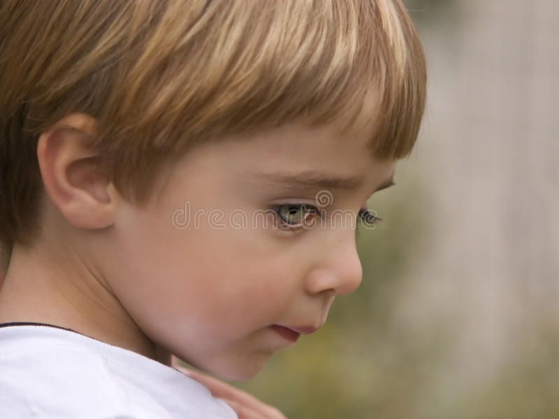 Shy Child with Blue Green Eyes. A young boy with blond hair and blue-green eyes with long black lashes looking shyly downward stock photos