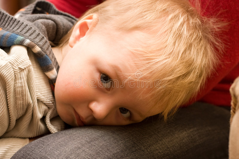 Download Shy cute boy stock photo. Image of innocent, love, little - 4590926