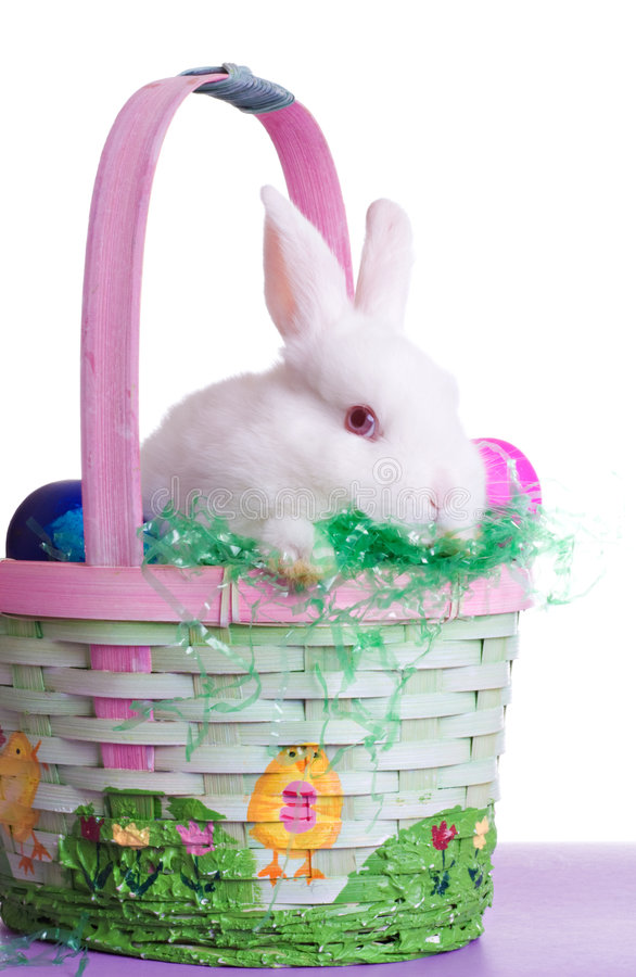 Shy Easter Bunny. Talking Baby Easter Bunny in Colorful Surroundings royalty free stock photo