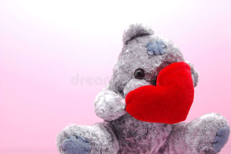 Download Shy teddy stock photo. Image of love, soft, togetherness - 4100274