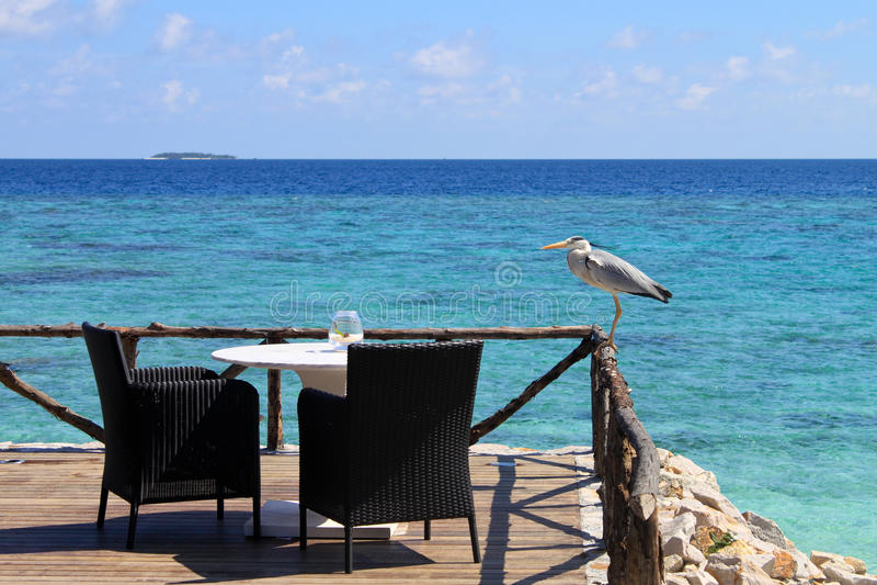 Sièges par une vue d'océan images libres de droits