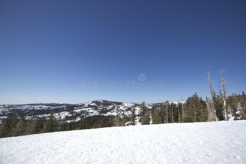 Siërra de sneeuwwaaiers van Nevada royalty-vrije stock afbeelding