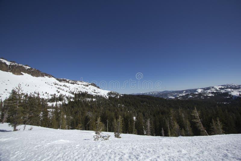 Siërra de sneeuwwaaiers van Nevada royalty-vrije stock foto's