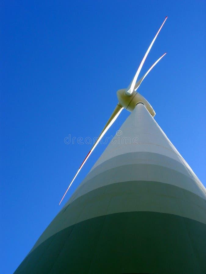siła wiatru obrazy royalty free
