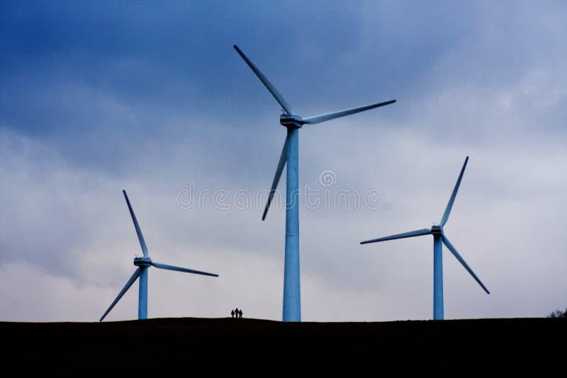 siła wiatru obrazy stock