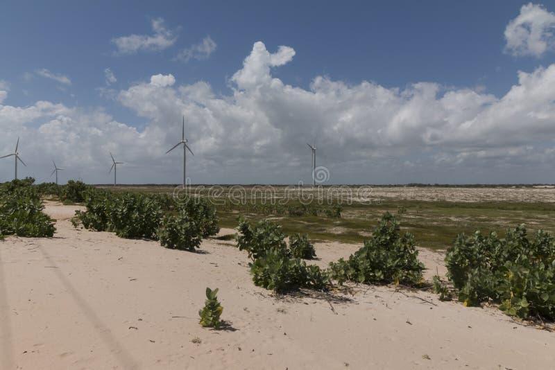 Siła wiatru w rio grande robi Norte, Brazylia zdjęcia stock