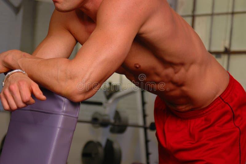 siłownia ciała zdjęcie stock