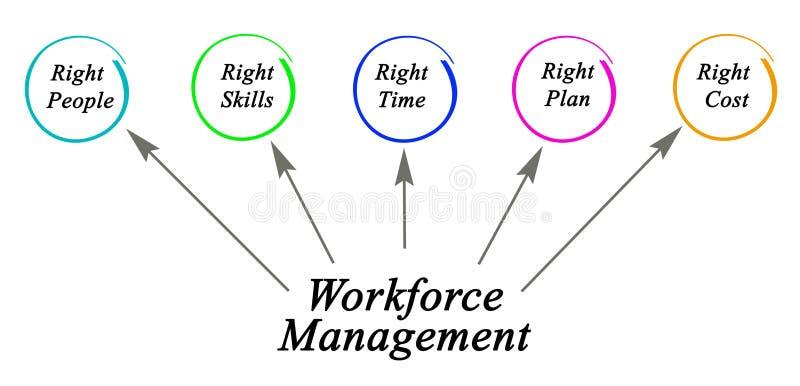 Siły roboczej zarządzanie ilustracja wektor