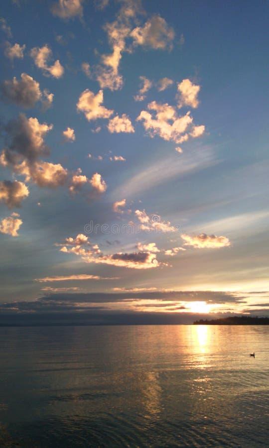 Si appanna la luce solare di riflessione fotografia stock