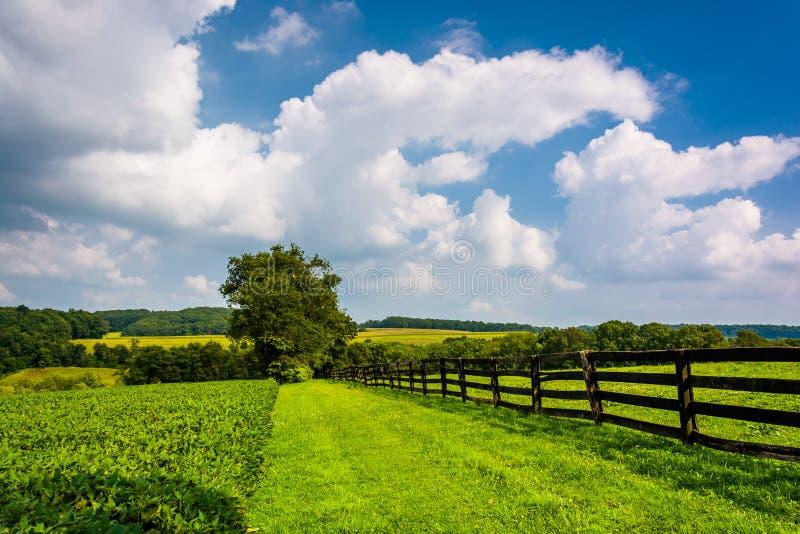 Si rannuvola il recinto ed i campi dell'azienda agricola nella contea di York rurale, Pennsylv fotografie stock libere da diritti
