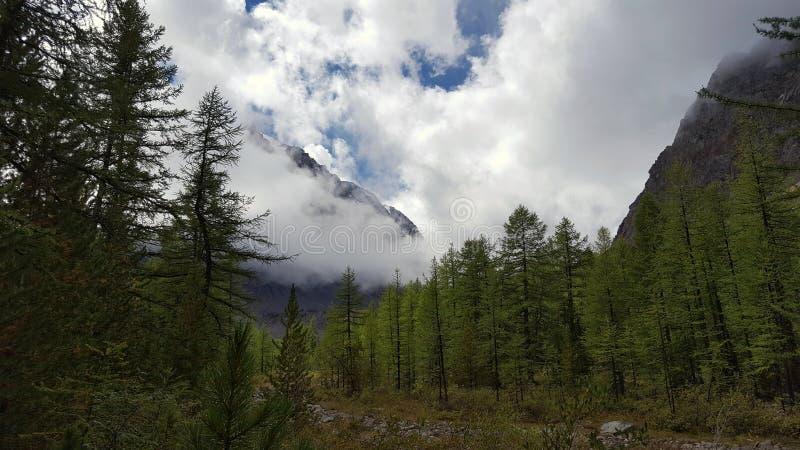 Si rannuvola la valle della montagna fotografia stock libera da diritti