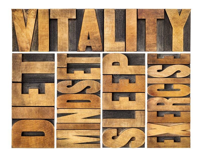 Sia a dieta, dorma, esercizio e mindset - concetto di vitalità immagine stock