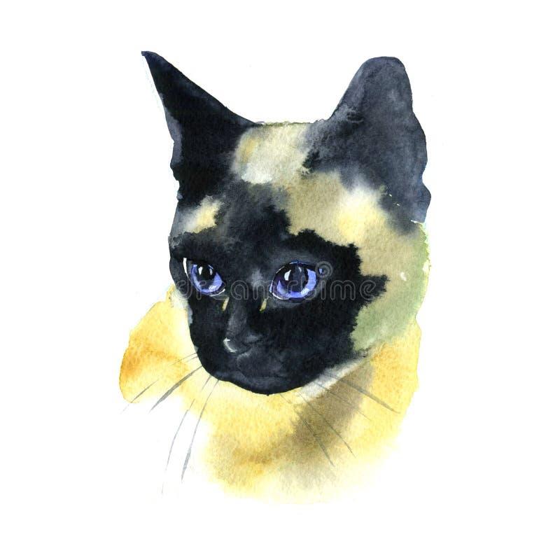 Siamese Cat Hand Drawn Pet Portrait för vattenfärg som illustration isoleras på vit royaltyfri illustrationer