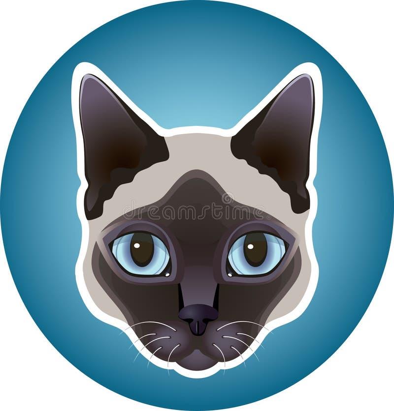 Siamese cat icon stock photo