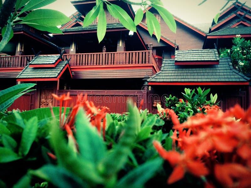 Siamesisches Haus stockbilder