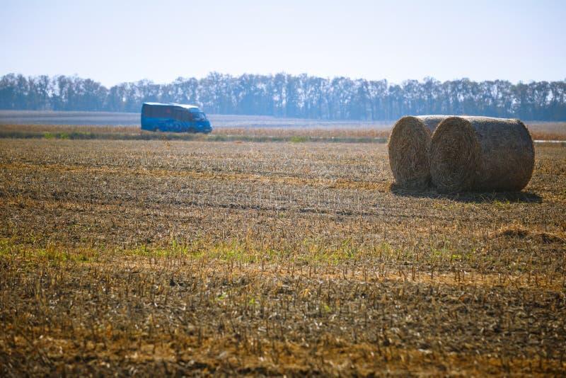 Siano kaucja zbiera w cudownym jesień rolników pola krajobrazie z siano stertami obrazy royalty free