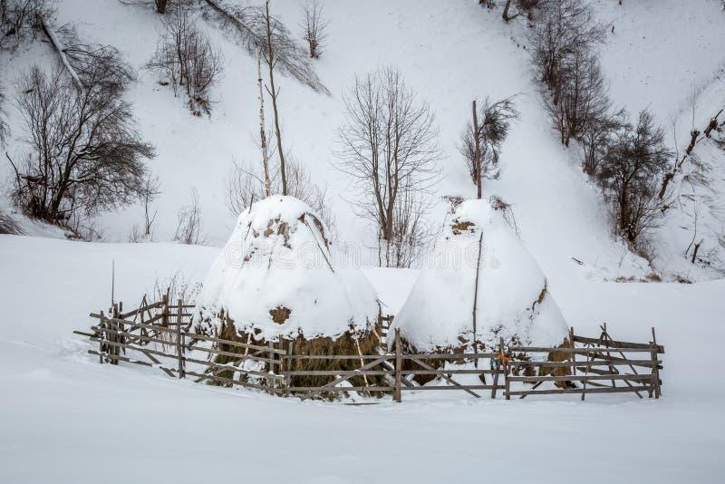 Download Siano Sterty Zakrywać W śniegu Zdjęcie Stock - Obraz złożonej z haycocks, sterty: 57656270