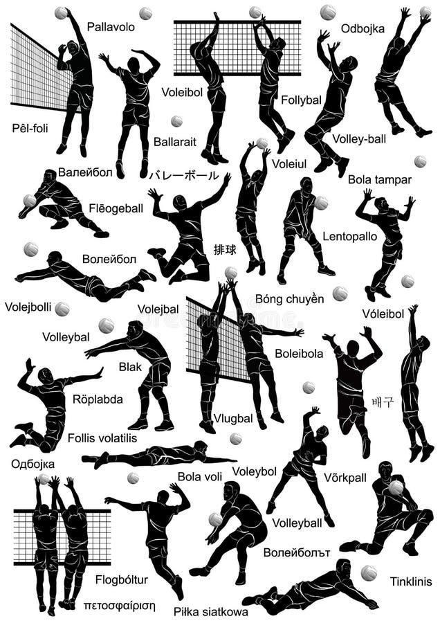 Siatkówka graczów sylwetka royalty ilustracja