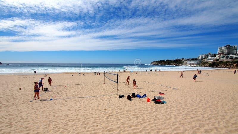 Siatkówki szkolenie na Bondi plaży, Sydney, Australia obrazy royalty free