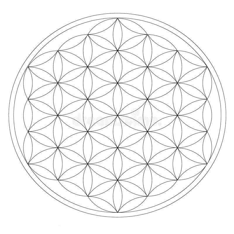 Siatka dla krystalicznej medytaci ilustracja wektor